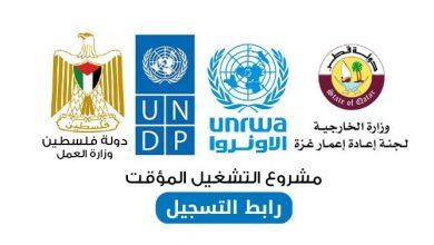 Photo of رابط تسجيل و تحديث البيانات: التشغيل المؤقت للخريجين و العمال بالتعاون مع وزارة العمل و UNDP